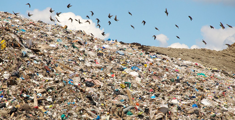 Waste exchange about to be launched in Serbia, RTS finds out what are the benefits