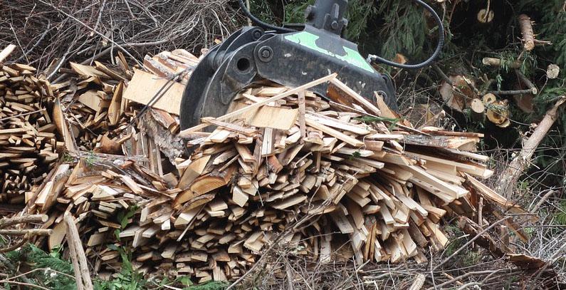 Srbija poziva konsultante za projekat koji promoviše biomasu