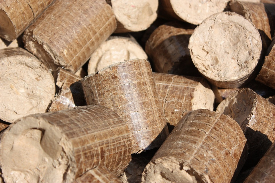 Iskorisceno vise od 80 odsto sredstava iz trece faze Energy Wood programa