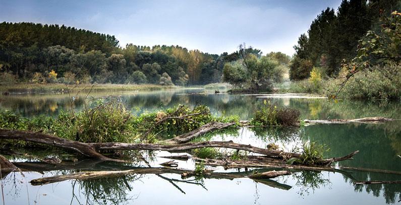 Male HE ugrozavaju ekoloska bogatstva na Balkanu