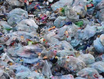 Trivan: Rešenje za smanjenje upotrebe plastičnih kesa do kraja godine