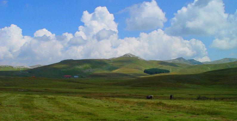 Raspisan javni poziv za dodelu koncesije za vetropark Grebak