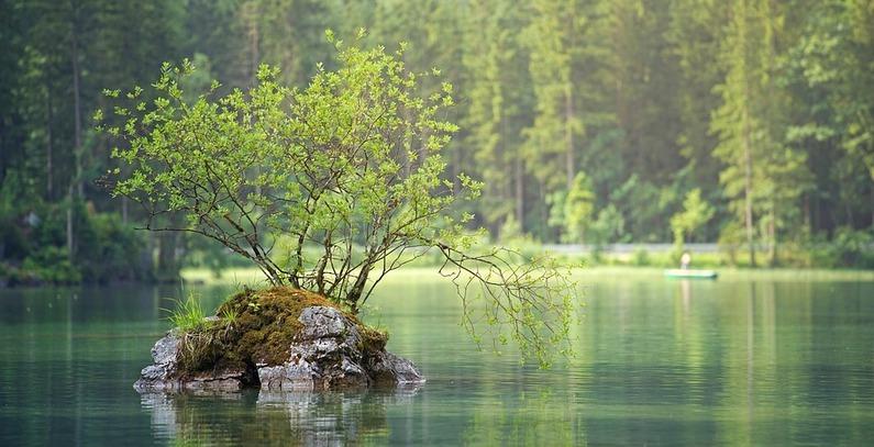Albanija zaustavlja gradnju hidroelektrana zbog brige o zaštiti životne sredine