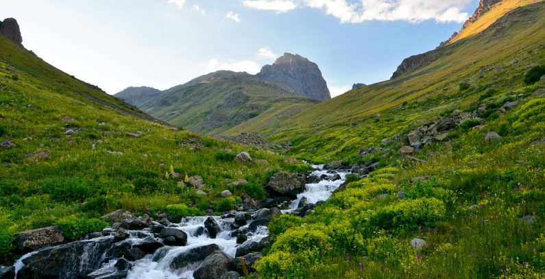 WWF: Šteta naneta svim rekama u Bugarskoj – izgrađeno 270 hidroelektrana, u planu još 200