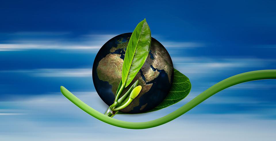 GGF obezbedio 25 miliona evra od OeEB za nastavak zelenog finansiranja
