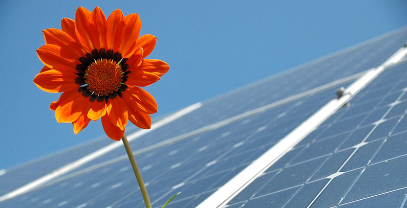 Hrvatska objavila poziv za aukcije za obnovljive izvore