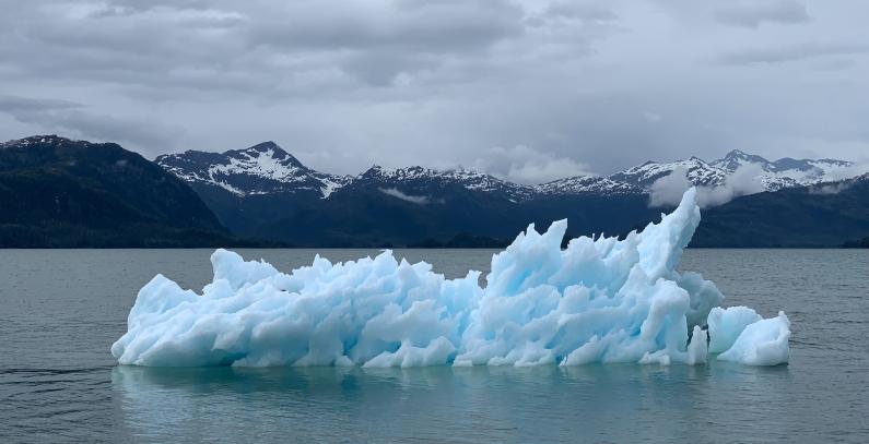 Deset lekcija pandemijske krize klimatskih promena u fokusu Danko Kalkan