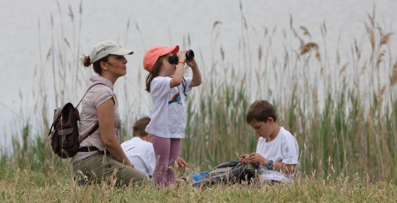 Kuda za vikend Srbiji besplatnih izleta posmatranje ptica Goran_Jancic