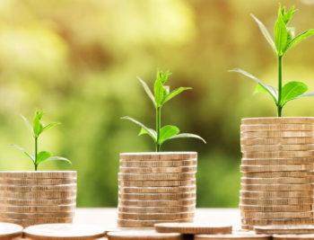 Rok za prijave eko taksu taksa 31 jul firme, organizacije preduzetnici