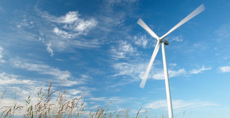 Vestas receives 83 MW order for Yahyalı wind park