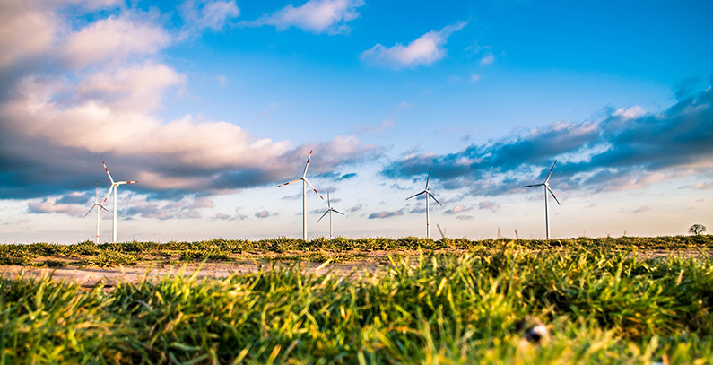 Chinese company CEE acquiring stake in Plandište wind park