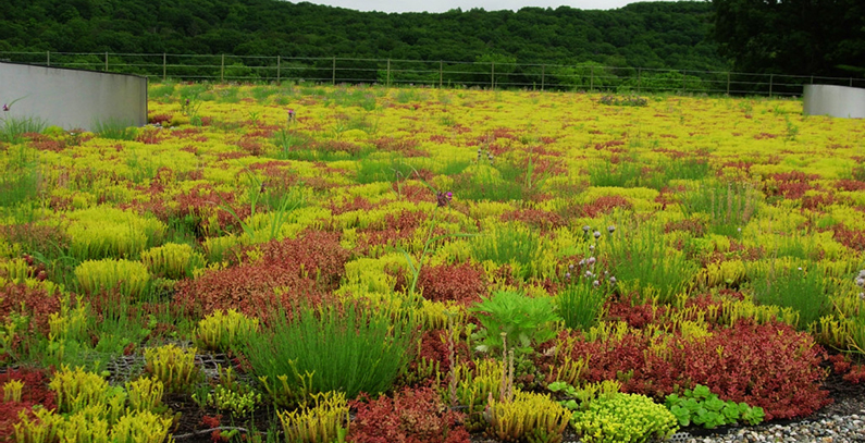 Green roofs as a modern concept of green building and its benefits to environment