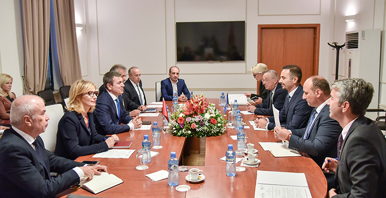 Kosovo* and Albania agree to intensify work on establishing common electricity market