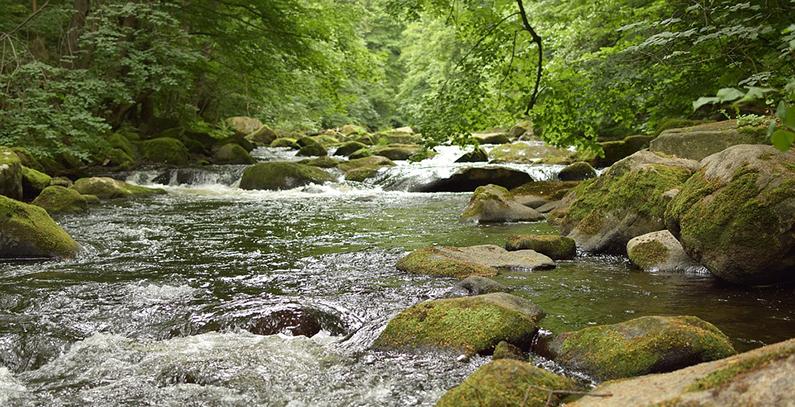 Slovenia plans to build Morača hydro plant with Turkey