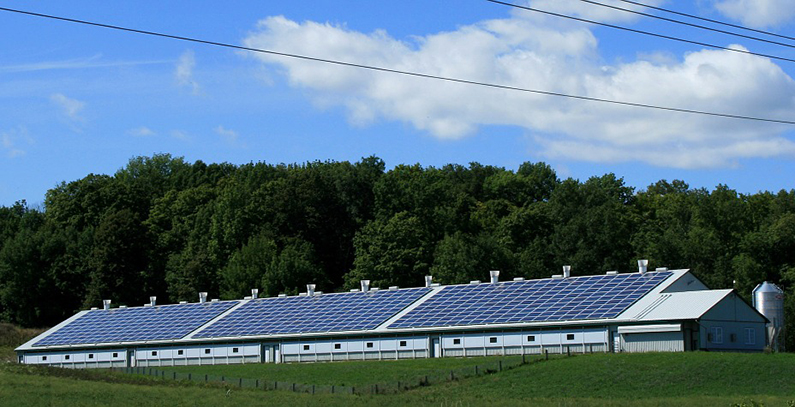 Vojvodina seeks to incentivize solar energy use in agriculture