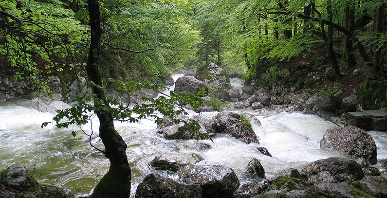 Slovenia pays EUR 69.4 million in renewable energy, CHP subsidies in H1