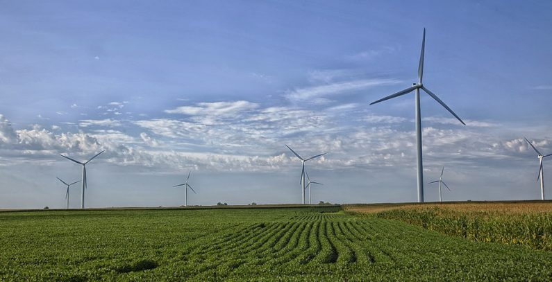 Belgium's Elicio brings 42 MW Alibunar wind farm on stream