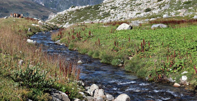 Residents vow to keep battling small hydropower plant Meteh