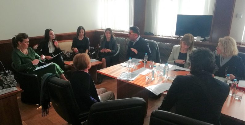 MPs of North Macedonia discussing tasks and challenges under chapters 15 and 27 of EU law