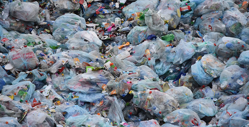 Vojvodina adopts Declaration on Environmental Protection, recommends ban on plastic bags