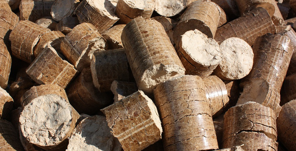 Eco Fund expands biomass heating grants program to entire Slovenia, cuts EV subsidies
