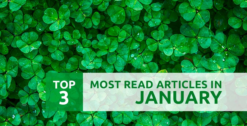 Most read in January: Blue Heart of Europe, Trebinje Energy Summit, green energy targets
