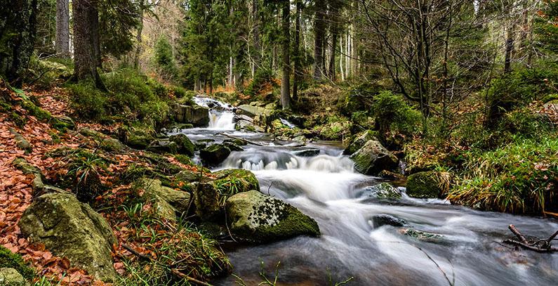 Activists Montenegro small hydropower plants study