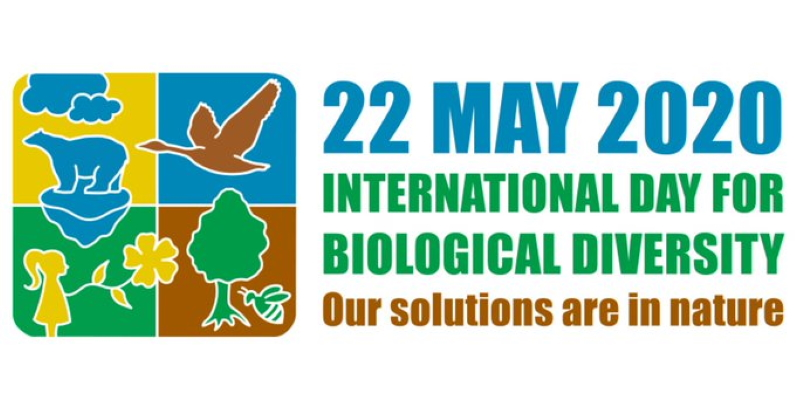 Our health depends on nature's health – on May 22 world marks its biodiversity day