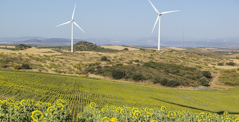 Renewable energy prices rebounded 10% after collapse in March