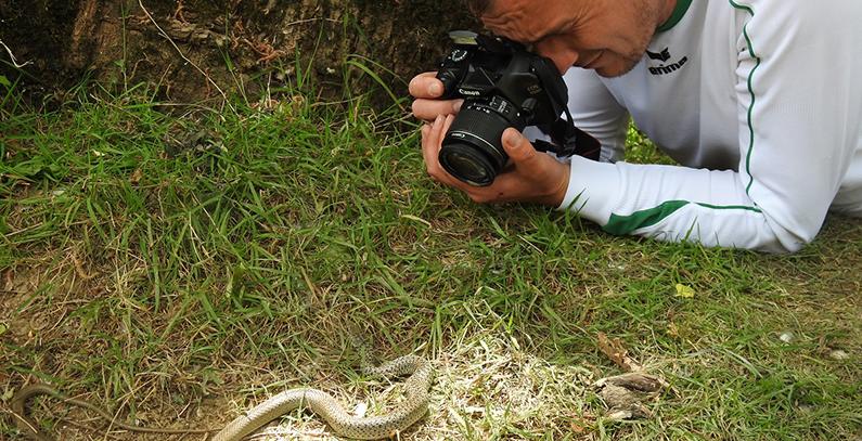 Flora, fauna research underway in basins of four Neretva tributaries