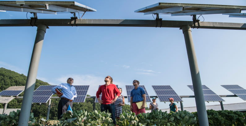 Hundreds of Greek families jointly building solar power plants of 100 MW