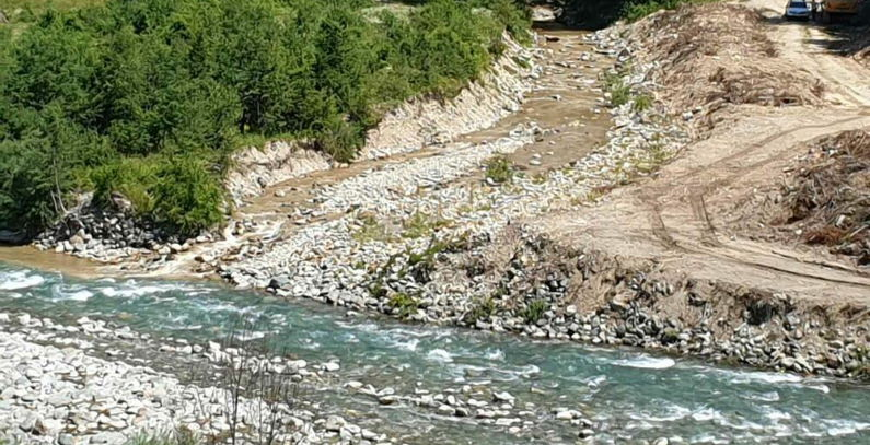 Environmentalists alert UNESCO of 'ecocide' of Tara river in Montenegro