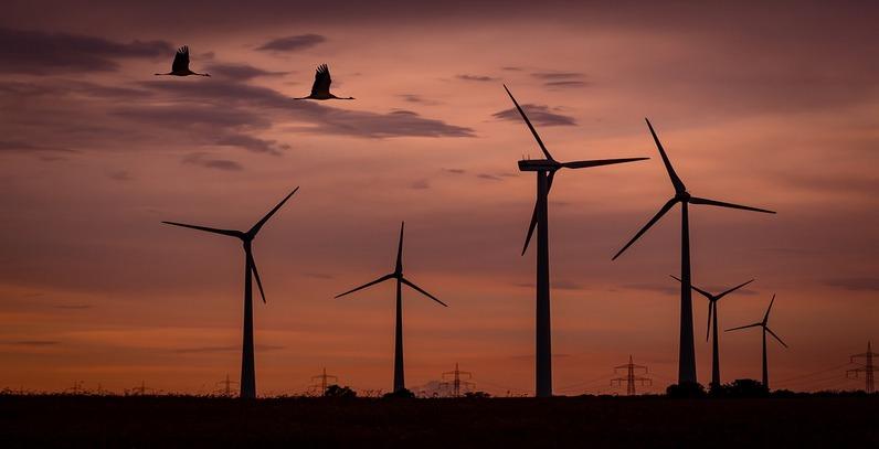 Court halts Vrataruša 2 wind farm project over EIA study