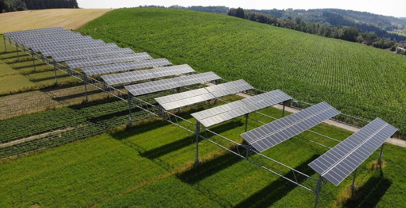 Agrivoltaic solar project of 13 MW underway in Cyprus