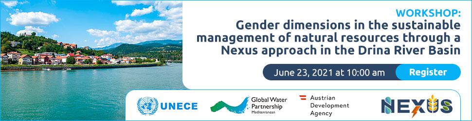Gender workshop - UNECE–Global Water Partnership ADA June 23, 2021