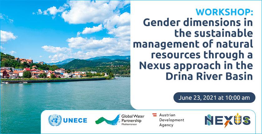 UNECE Global Water Partnership Austrian Development Agency gender workshop June 23, 2021
