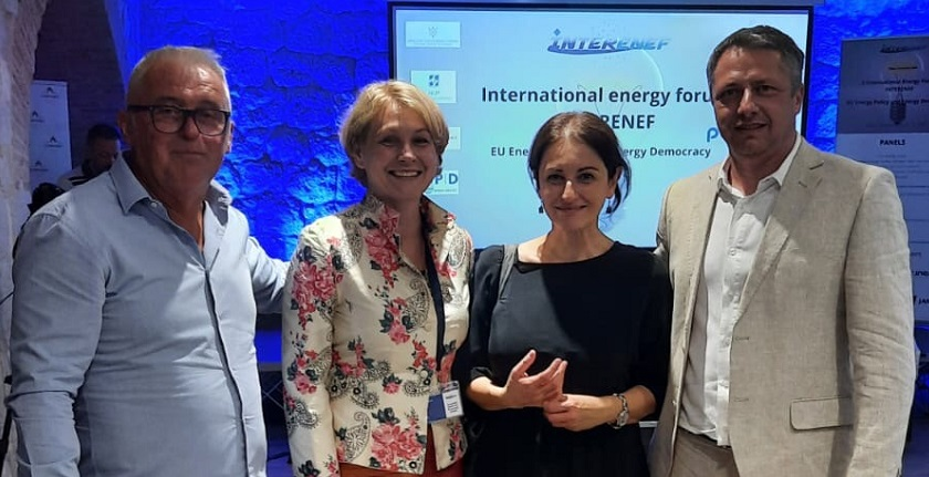 nadezda kokotovic energy democracy interenef