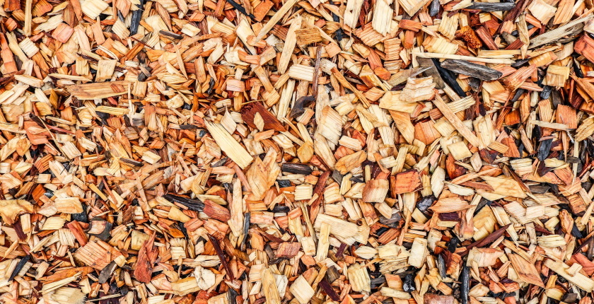 Two biomass heating plants to be operational in Serbia as of October 1