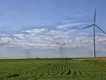 Belgium's Elicio brings 42 MW Alibunar wind farm on stream